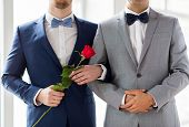 people, homosexuality, same-sex marriage and love concept - close up of happy male gay couple with red rose flower holding hands on wedding poster