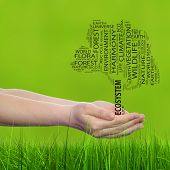 Concept conceptual black text word cloud tree man or woman hand, green blur grass background metaphor to nature, ecology, green, energy, natural, life, world, global, protect, recycle or environmental poster
