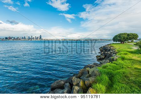 Seattle Bay And Skyline