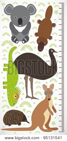 Animals Australia - Koala Kangaroo Lizard Platypus Echidna Emu. Children Height Meter Wall Sticker.