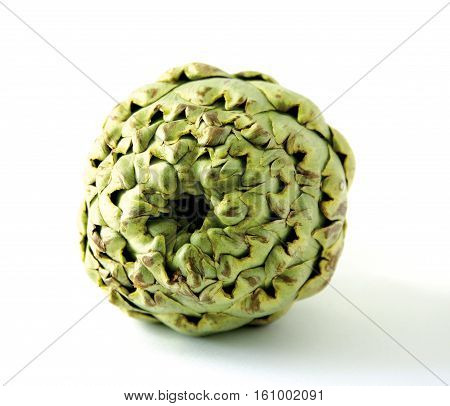 Artichoke seen from the front on a white background