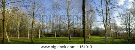 Arrow Valley Country Park Redditch Worcestershire