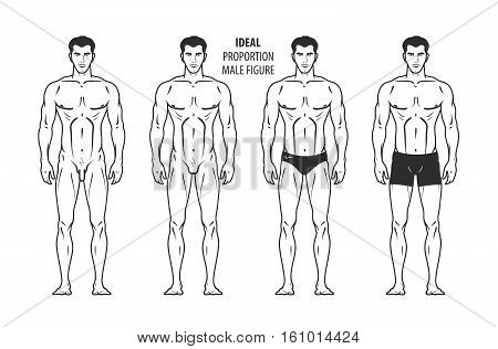 Ideal proportion, male figure. Hand-drawn outline man in full growth, human. Vector illustration isolated on white background