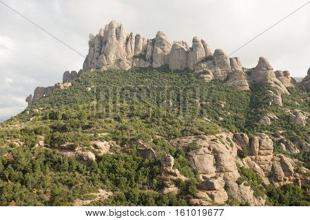 Forestry leads to the conglomerate rock towers of Mont Serrat Catalonia Spain Europe.