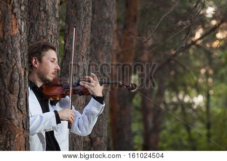 Violinist playing the violin ciose up horizontal