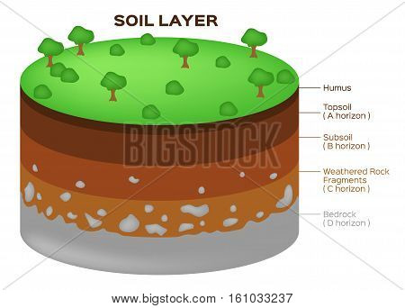 Earth structure soil layers and aquifer vector