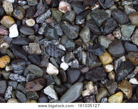 A closeup of a bed of rocks.