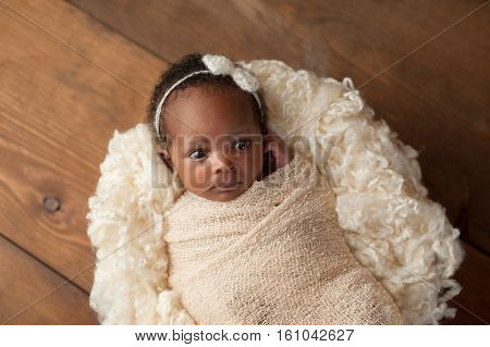 An alert one month old newborn baby girl wearing a cream colored bow headband and swaddled with a beige stretch wrap. Shot in the studio on a wood background.