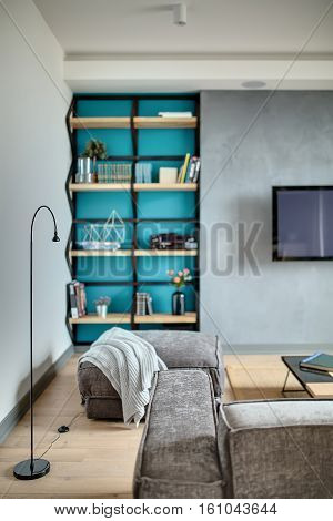 Interior in a modern style with gray walls and a blue niche, parquet with a carpet on the floor. There is a gray sofa and a pouf with a plaid, table, shelve with books and flowers, TV, player.