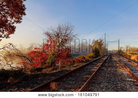 Railroad In The Forest On A Foggy Autumn Day.