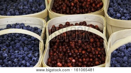 Close up of blueberries and cranberries in long wood baskets at the outdoor/indoor Jean-Talon Market in Montreal, Quebec, on a bright day in September.