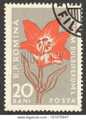 MOSCOW RUSSIA - CIRCA NOVEMBER 2016: a post stamp printed in ROMANIA shows Lilium bulbiferum flower the series