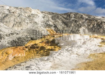 Vivid thermal terraces rock formations in Mammoth Hot Springs, Yellowstone National Park. USA