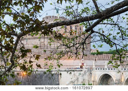 Branch Of Sycamore Tree And Castle Of Holy Angel