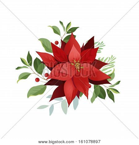 Christmas symbol poinsettia flowers, red leaves. Vector.