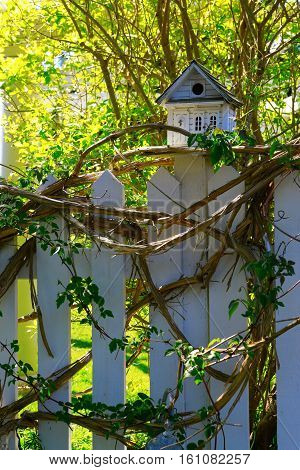 White Wooden Bird House On A Picket Fence Post