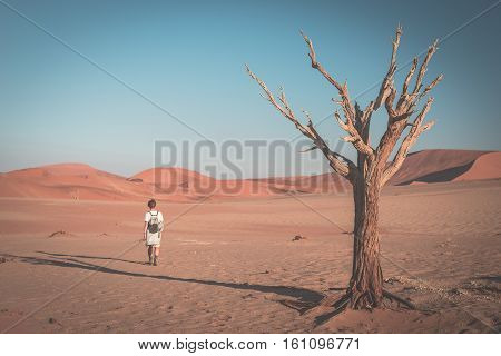 Tourist Walking On The Scenic Desert At Sossusvlei, Namib Naukluft National Park, Namibia. Braided A