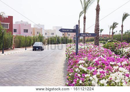 Road with pointer, car, colorful flower bush in Sharm El Sheikh