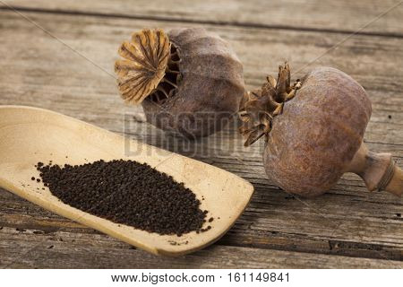 poppy seeds on wooden shovel with poppy pods on wooden table