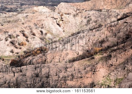 Badlands with a burnt chaparral woodland caused from a wildfire taken in the Cajon Pass, CA