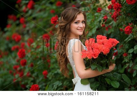 Young beautiful pretty girl with long hair and white dress standing and holding bucket red roses.