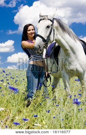 equestrian with a horse on meadow poster