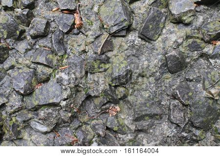 Cold greystone texture. Macro granit background wall