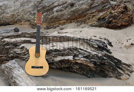 six string guitar in beach sand leaning on weathered log