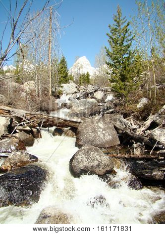 A rushing stream on a mountain path in Wyoming