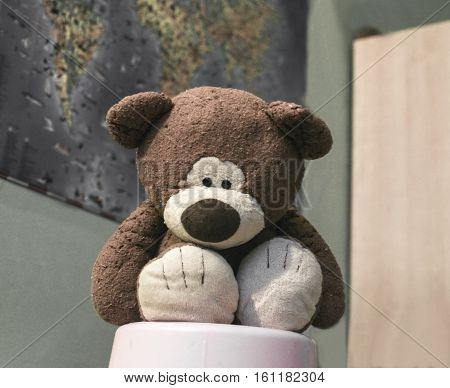 Old teddy bear sad about those times when the mistress was a baby