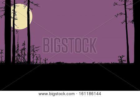 Nighttime Wilderness Scene With Moon In Sky