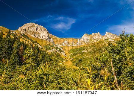 Rocky Tops In Slovakia