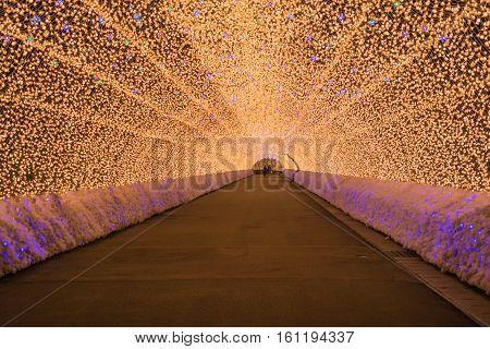 Nagoya Japan. Nabana no Sato garden at night in winter.