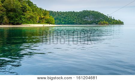 Friwen Island in Front and Wall in Background, West Papuan, Raja Ampat, Indonesia. Famoust Diver Spot