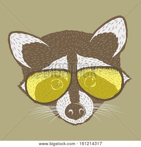 Raccoon vector illustration. Raccoons head isolated