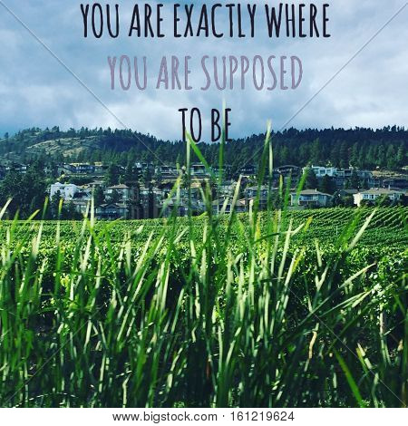 You are exactly where you are supposed to be. Inspirational quote. Talk grass, green field with house and hills background. Instagram effects