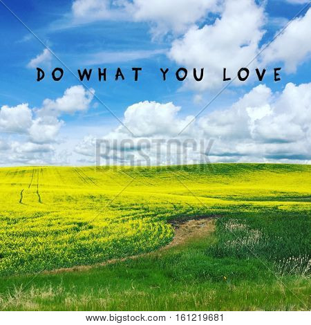 Do what you love.Beautiful bright yellow canola field landscape with inspirational quote. Bright blue sky white clouds background.Dark lush green grass.Tracks and trail through field.Instagram effects