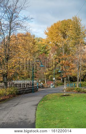 A view of autumn leaves at Coulon Park in Renton Washington.