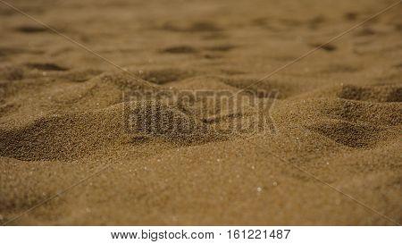 sand on beach desert egypt dry sun background