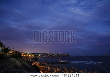 night in tropical location red sea palm purple sky nice sea