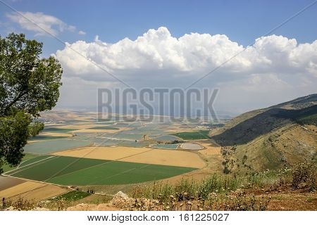 View of the Jezreel Valley from Mount Carmel in Lower Galilee Israel