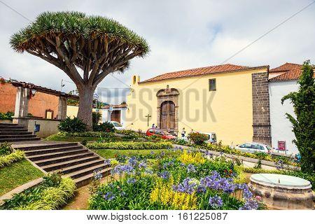 La Orotava, Tenerife, Spain - June 11, 2015: The Historical Center Of La Orotava Town With Drago Tre