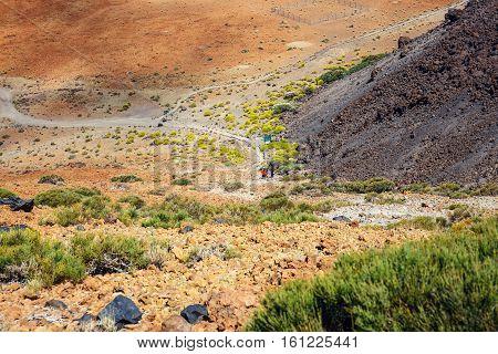 Montana Blanca In Teide National Park, Tenerife, Canary Islands, Spain