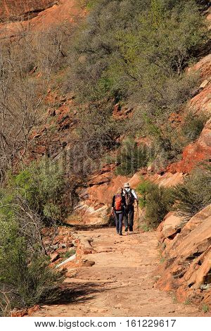 ZION NATIONAL PARK, UT - MARCH 30: Hikers make their way along the popular but strenuous Hidden Canyon Trail March 30, 2016 in Zion National Park, UT.