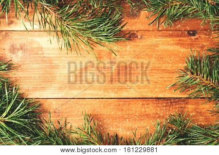 Christmas fir tree on a wooden board. vintage
