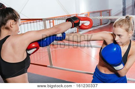 This is serious. Committed energetic strong athletes wearing boxing gloves fighting an intense sparring during a training in the gym