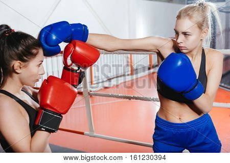 Powerful women. Sexy strong professional boxer wearing boxing gloves giving her partner blow to the head during the sparring fight at the gym