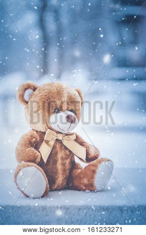 teddy bear sitting on snow in winter time