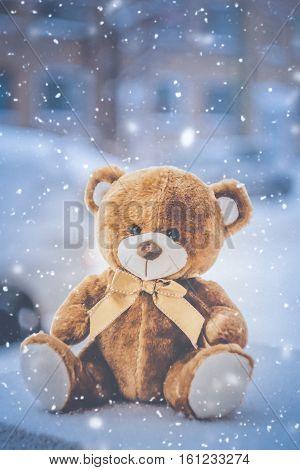 teddy bear sitting on snow in winter time