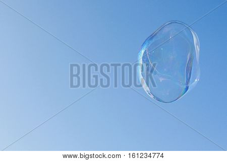 Large Bubble Floats In Air Against Cobalt Blue Sky